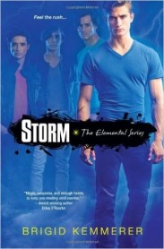 Storm Book Cover