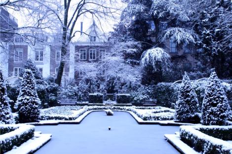 The Mansion Gardens