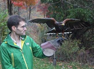 cal and jj the hawk(1).jpg