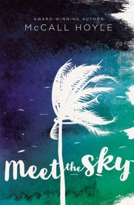 meet the sky cover